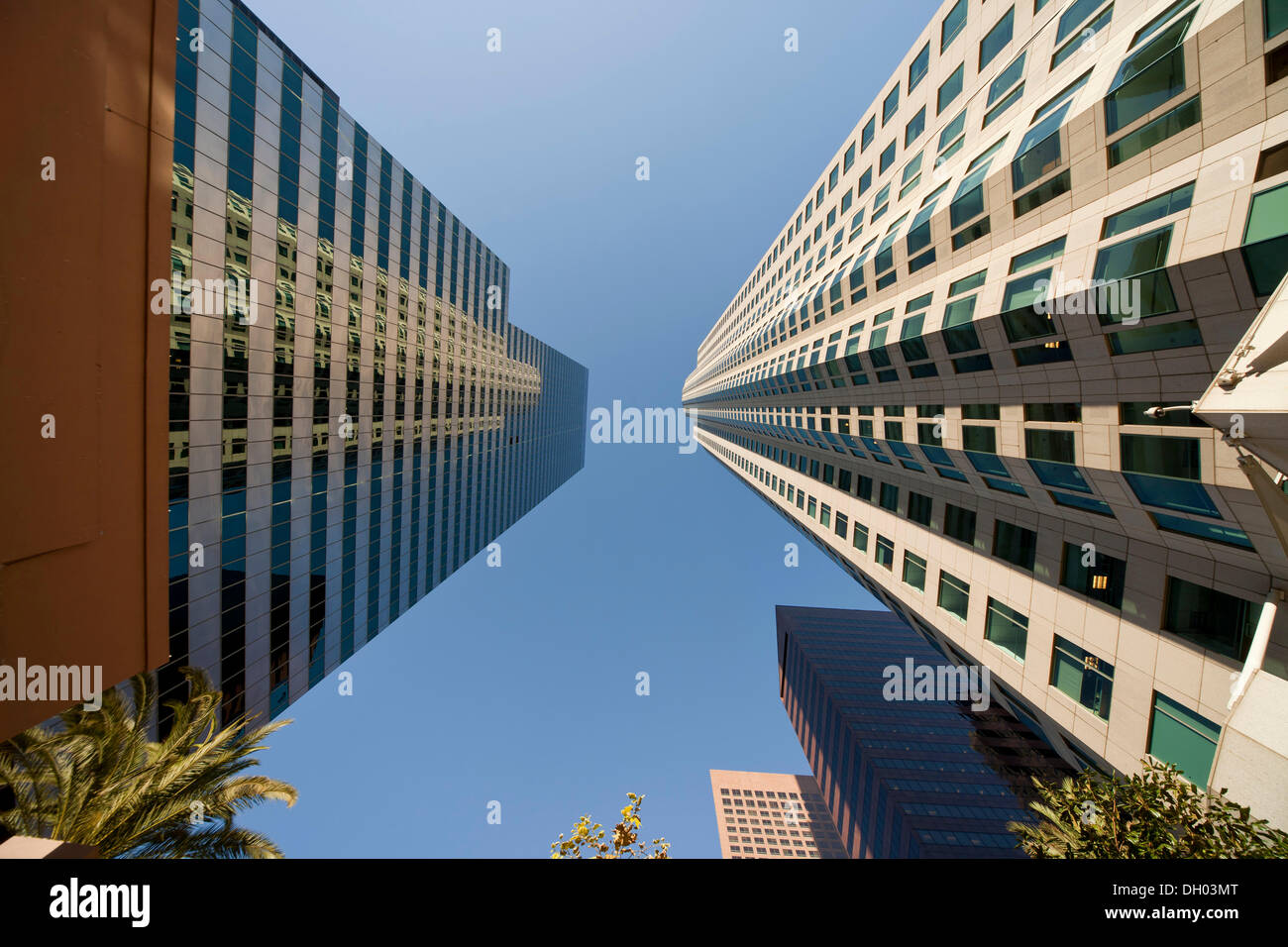 Skyscrapers of downtown Los Angeles, worm's eye view, Los Angeles, California, United States Stock Photo