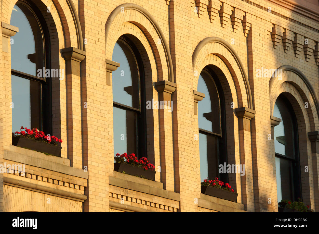 geraniums-on-a-windowsill-of-an-old-bank