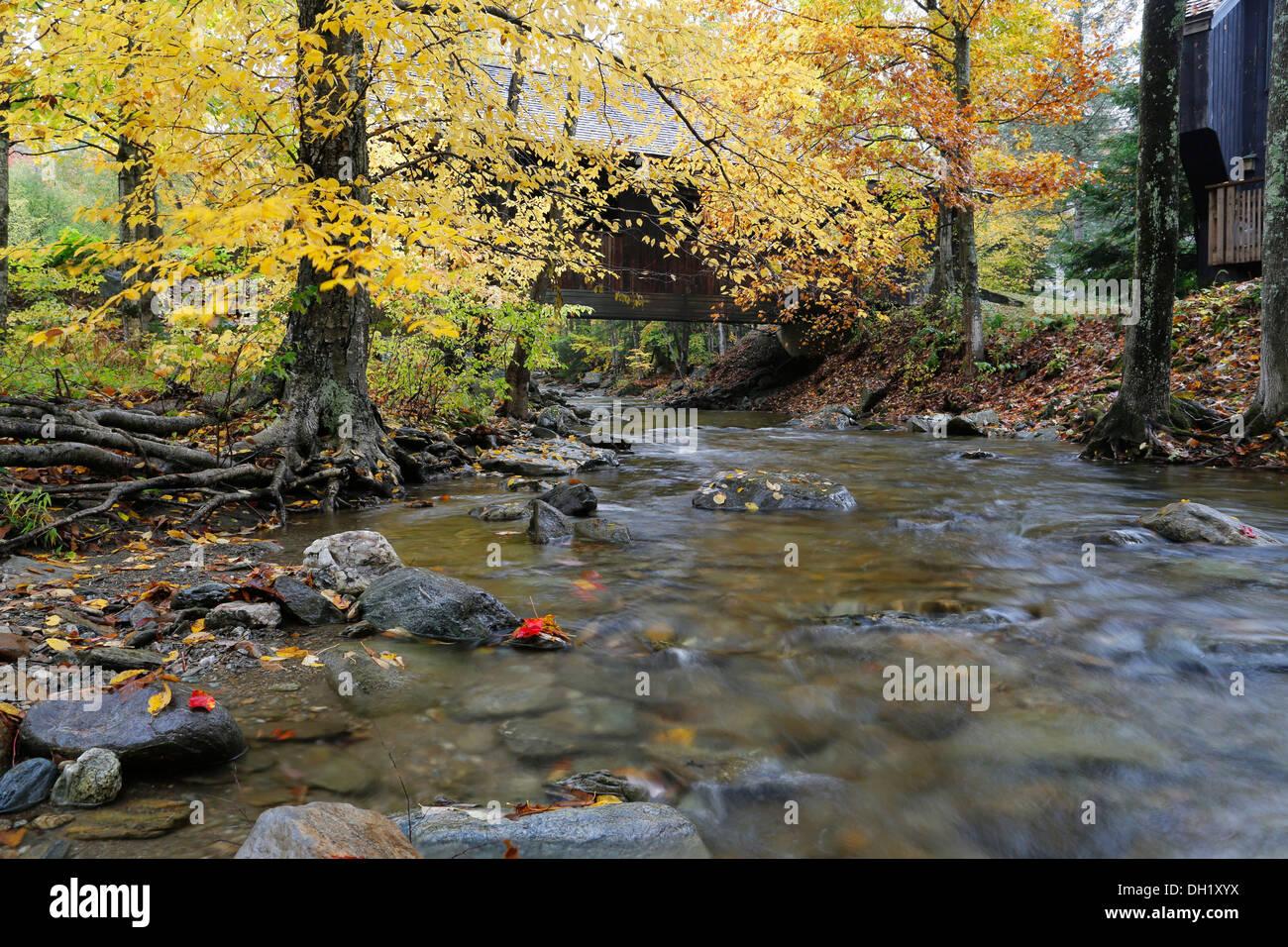 Battleground Covered Bridge in autumn, Mill Brook, Vermont, USA - Stock Image