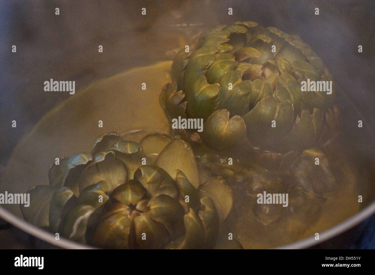 Boil  artichoke in water - Stock Image