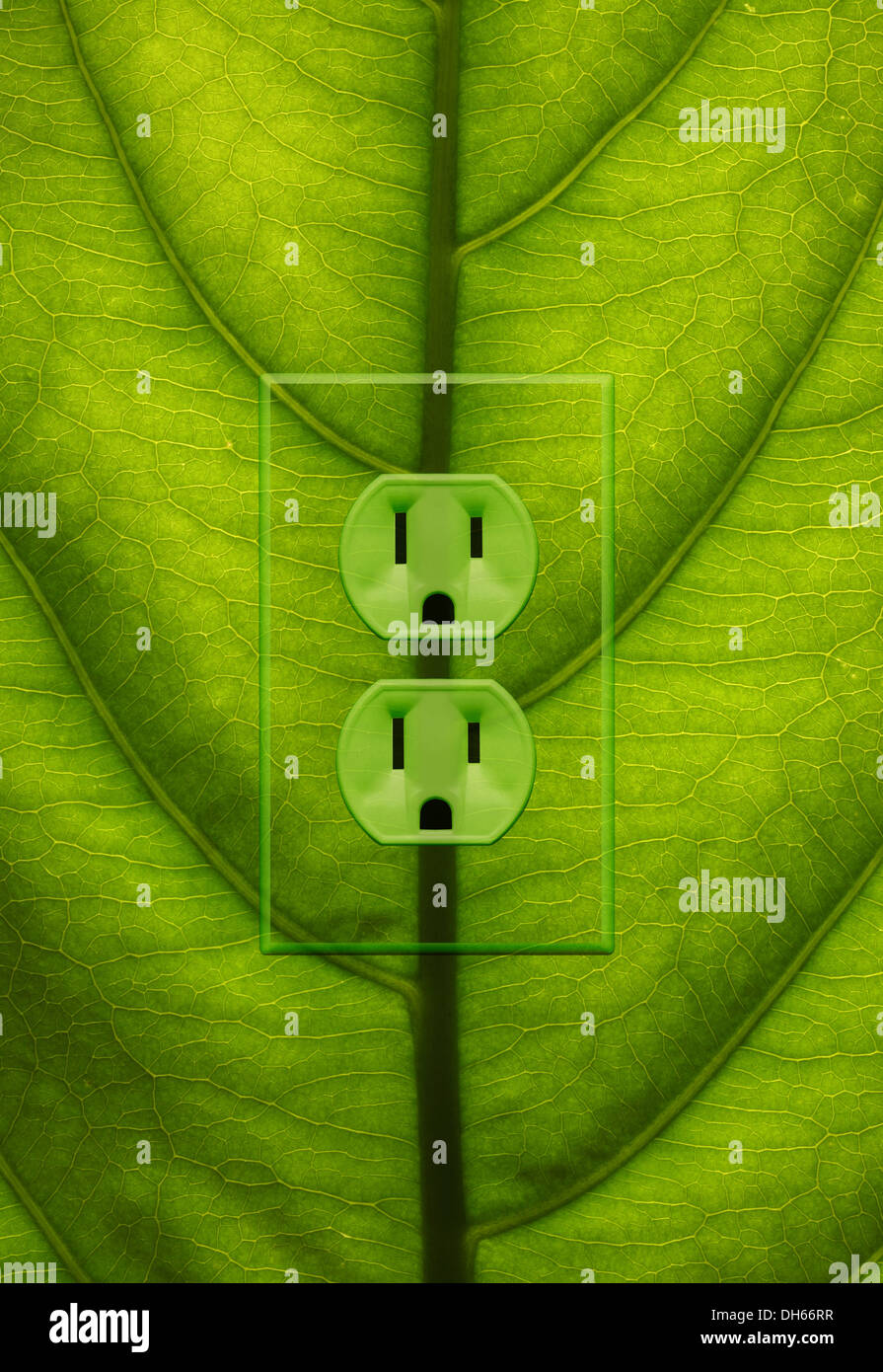 Close-up of a green plant leaf with green colored electrical outlets added. - Stock Image