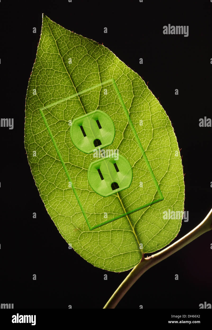 A green plant leaf on a branch with green colored electrical outlets added. Black background - Stock Image
