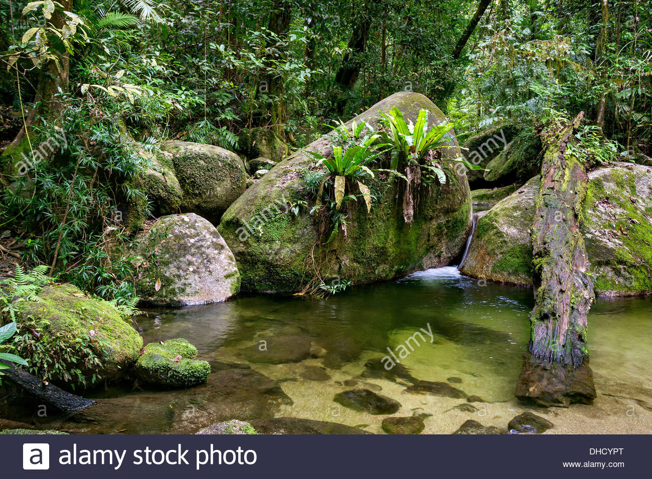 mossman-gorge-queensland-australia-DHCYP