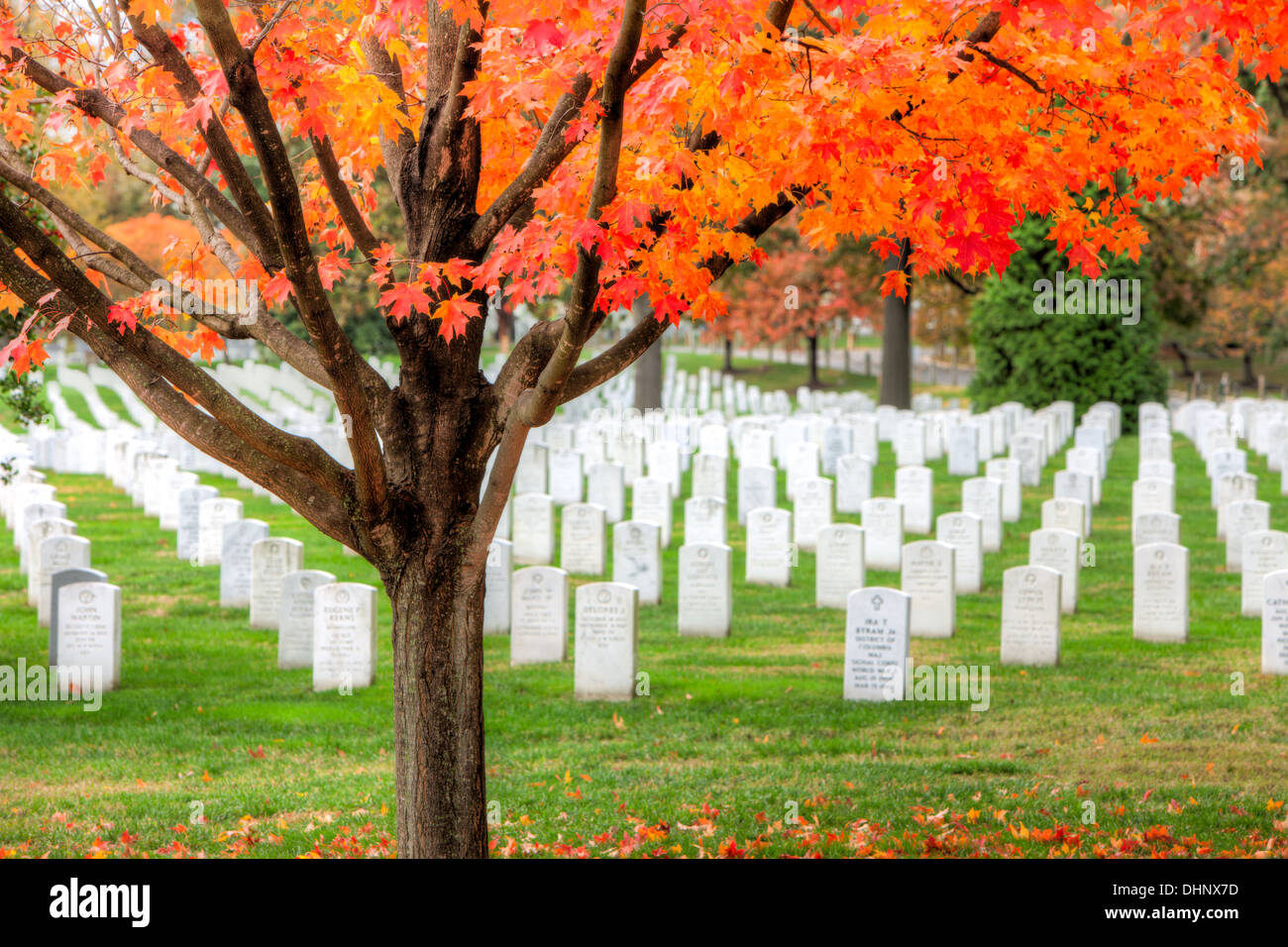 Arlington National Cemetery Stock Photos & Arlington National ...