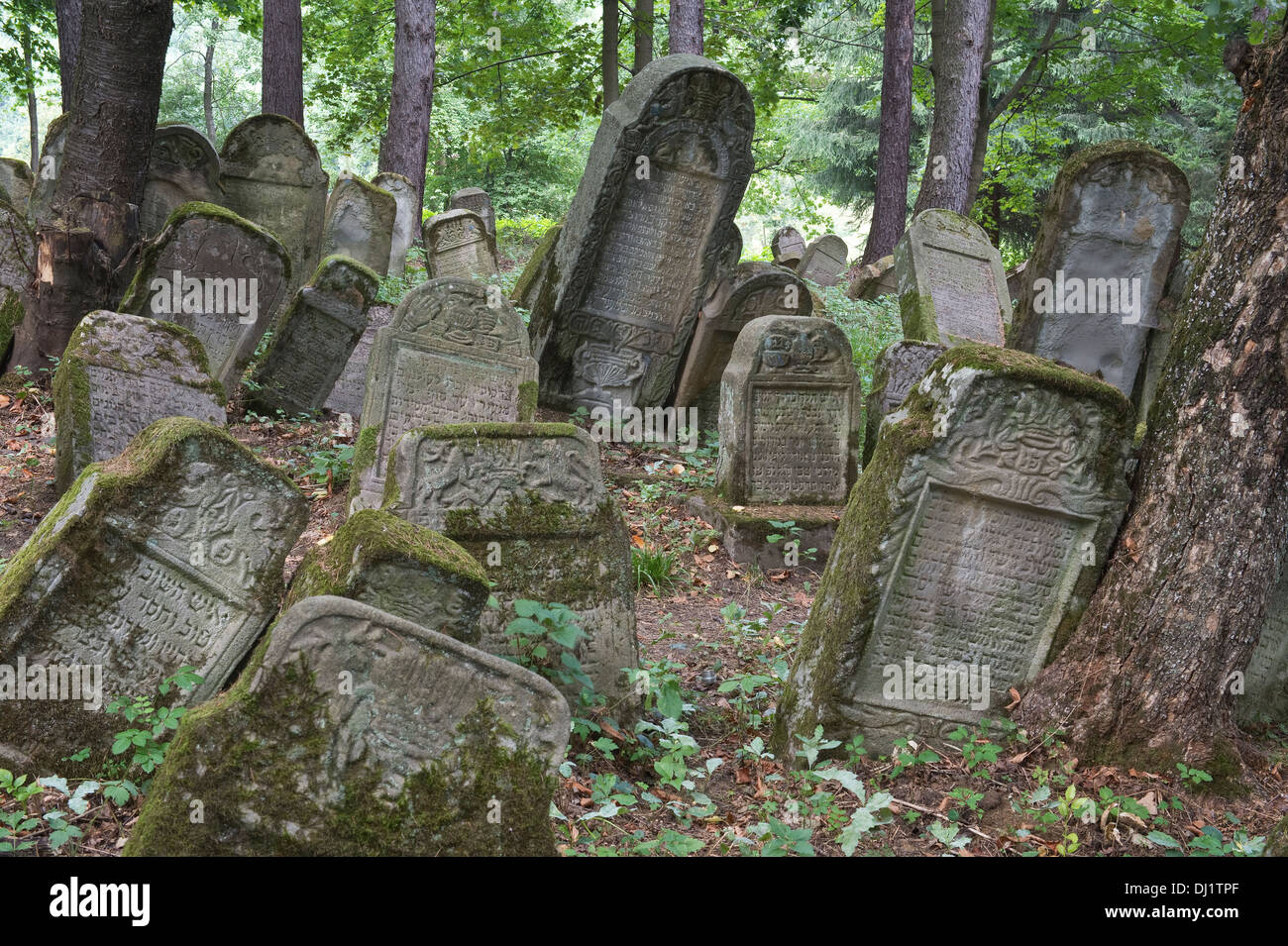 Tombstones dating back to the sixteenth century one of Poland's oldest, Kirkut, Jewish cemeteries Lesko Bieszczady - Stock Image