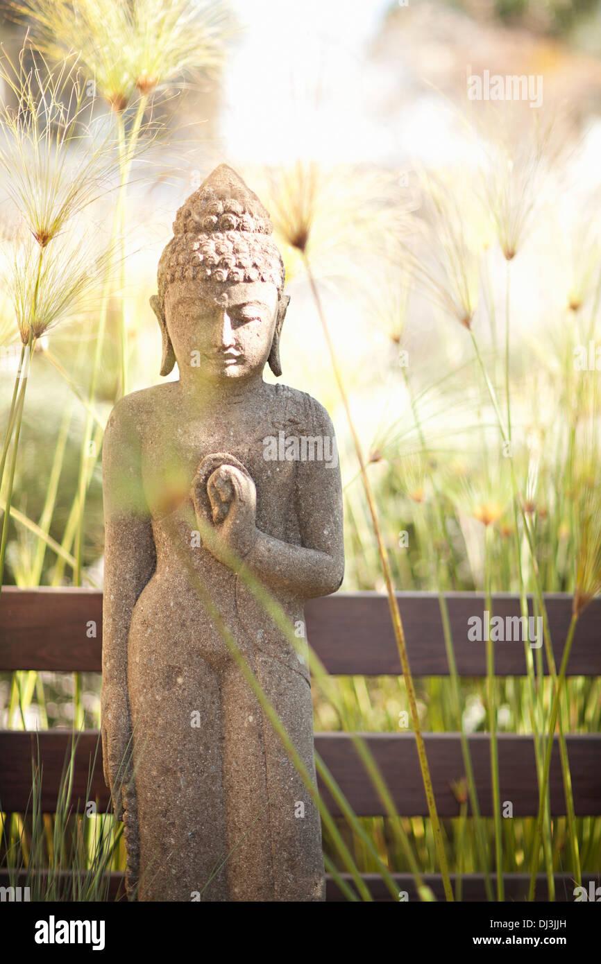 Tall grass around Buddha statue in sunny garden - Stock Image