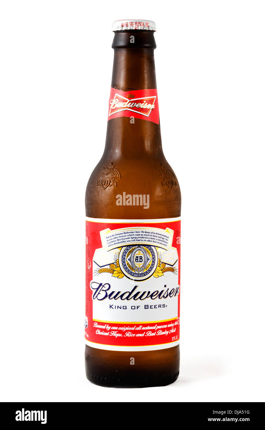 A 12oz bottle of cold frosted Budweiser beer, USA - Stock Image