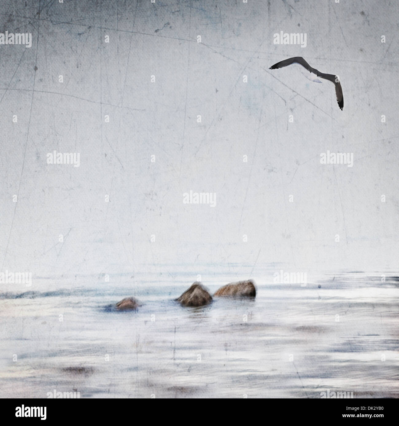 Seagull flying over ocean - Stock Image