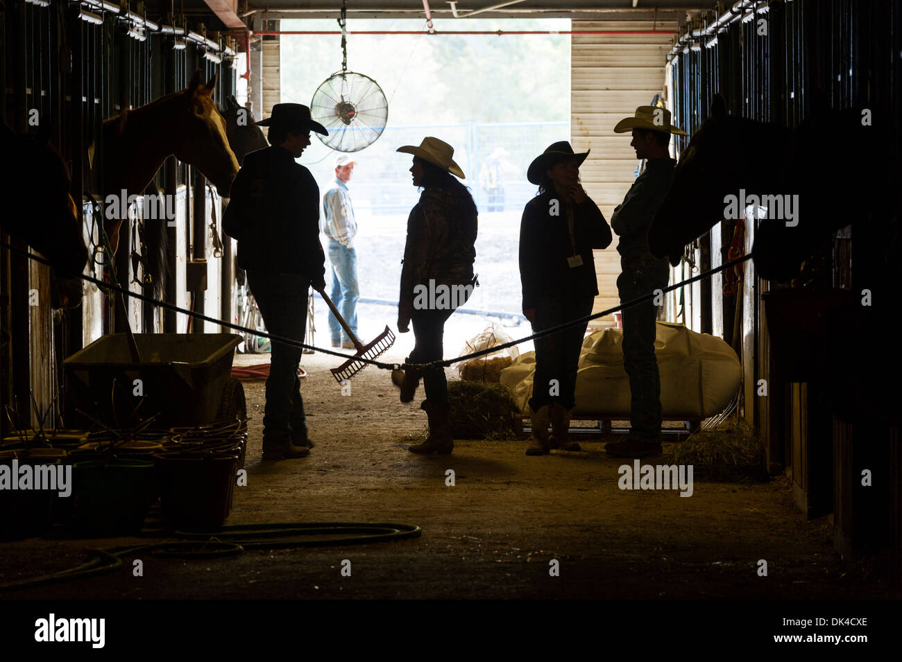 Cowboys and girls in the horse barns at the Calgary StampedeStock Photo