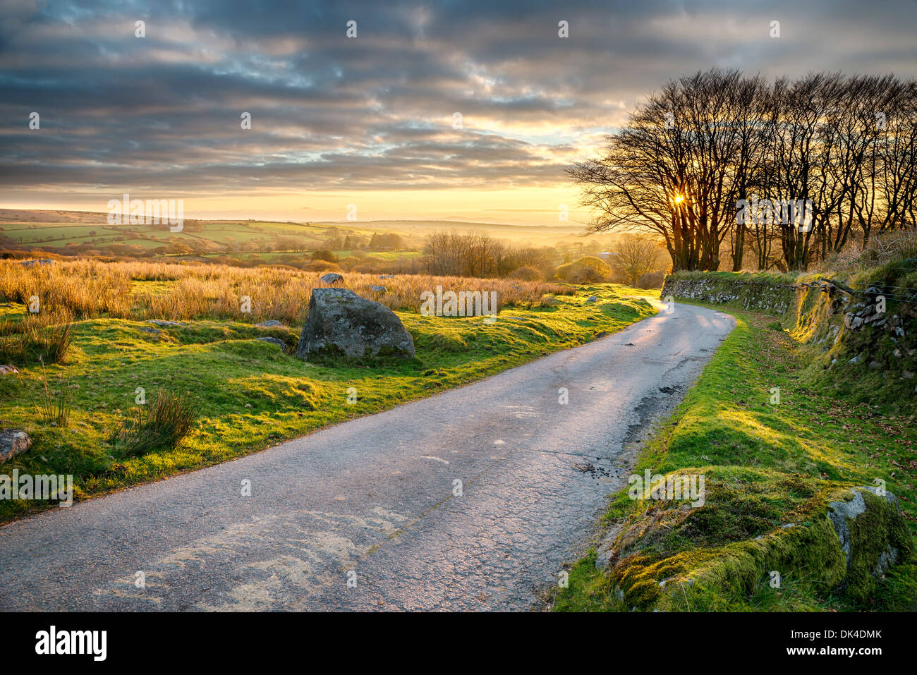 A country lane leading through Bodmin Moor in Cornwall - Stock Image