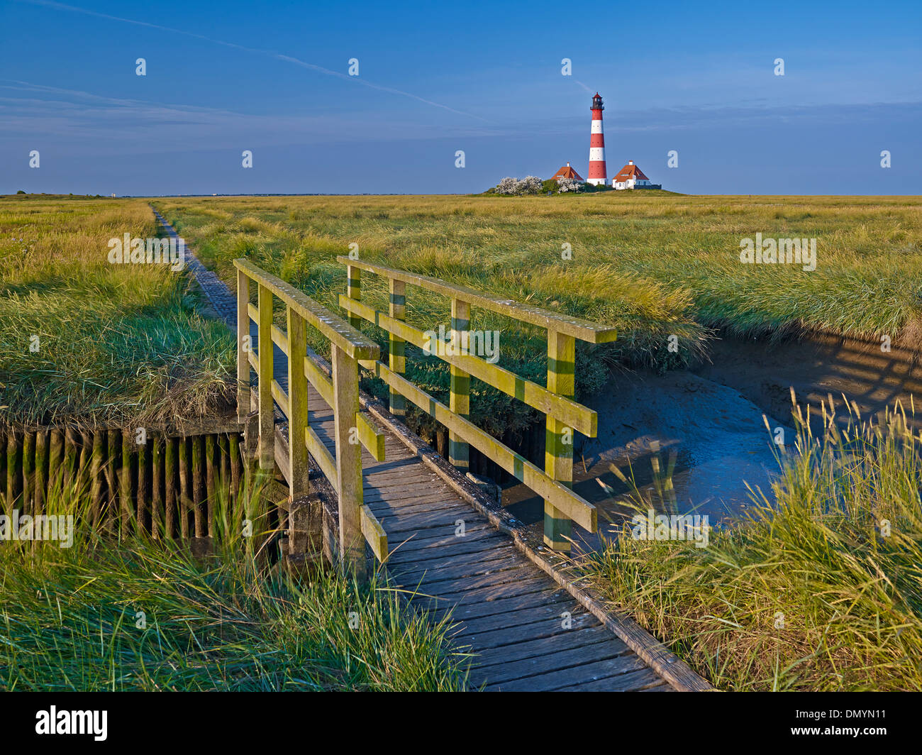 Lighthouse Westerheversand, Eiderstedt peninsula, North Frisia, Schleswig-Holstein, Germany - Stock Image
