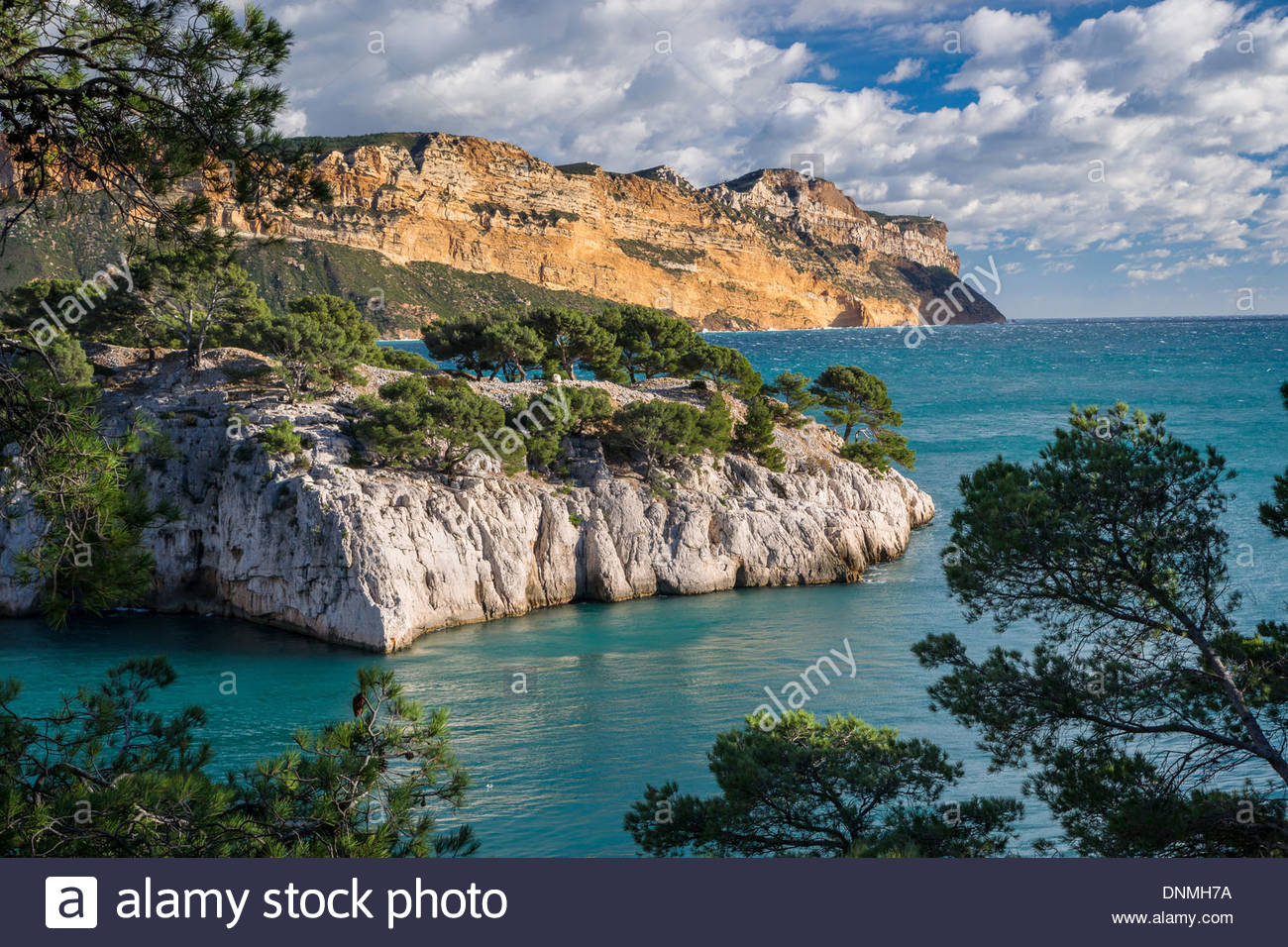 port-miou-in-the-calanques-de-cassis-nat