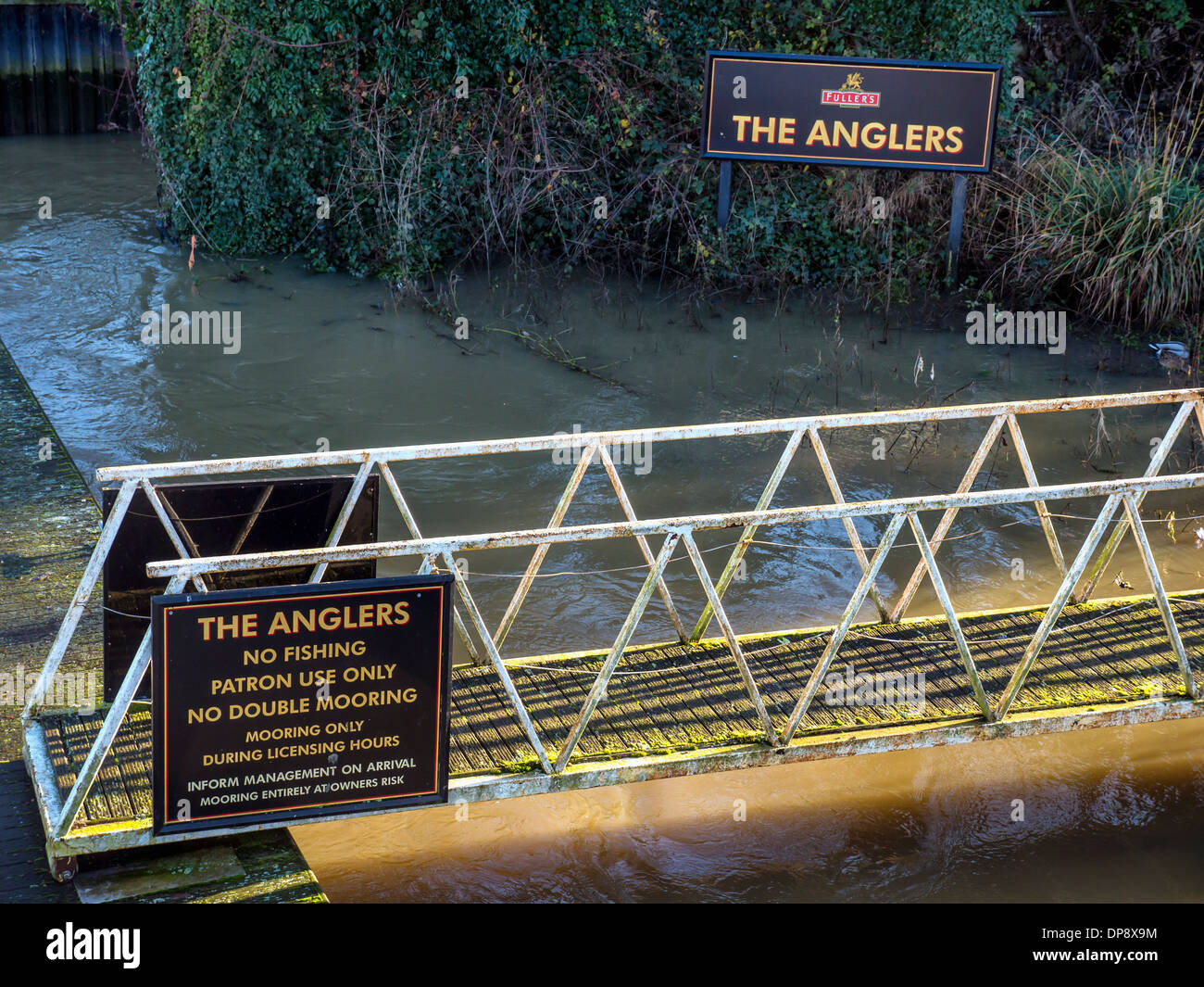 'The Anglers' Fuller's pub sign and sign banning angling next to the Thames river at Teddington, Greater - Stock Image