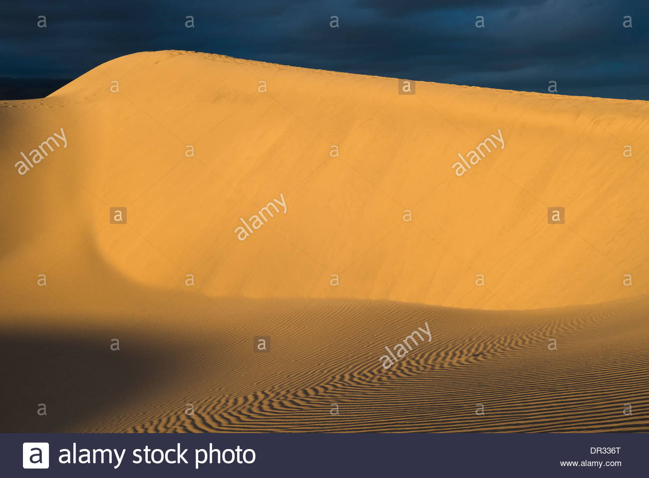 sand-dune-at-maspalomas-gran-canaria-canary-islands-spain-DR336T.jpg
