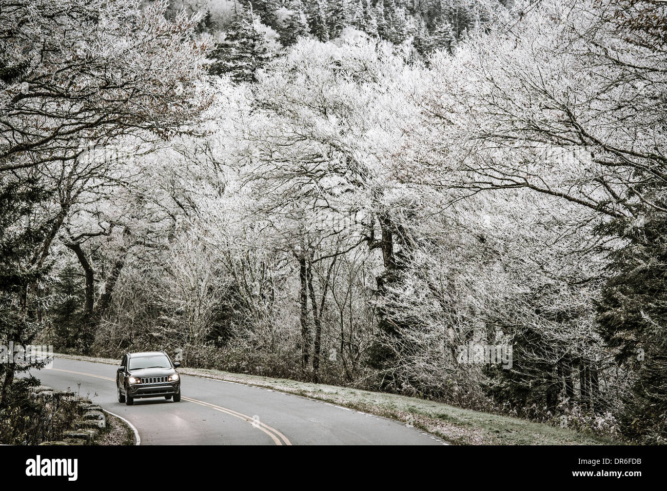 Smoky Mountains roadway in Tennessee, USA. - Stock Image