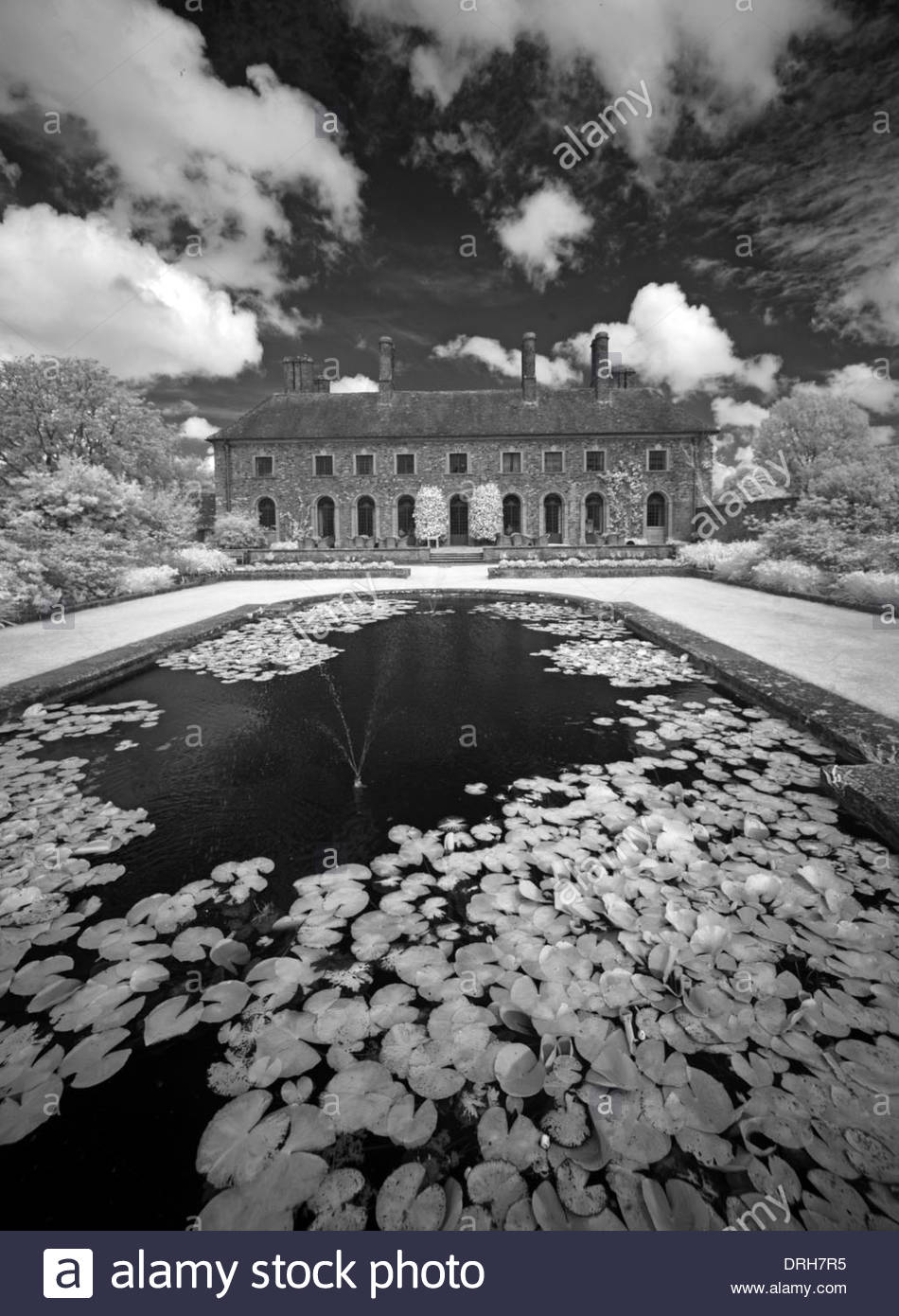 Lake,mono,black,white,black and white,black & white,water,drama,dramatic,cloud,clouds,Barrington,Court,Country,House,Infra,red,monochrome,NT,Somerset,England,UK,National,Trust,National Trust,lilly,lillies,summer,United Kingdom,beautiful,beauty,boundary,building,clouds,country,countryside,GoTonySmith,dark,day,infrared,IR,outdoor,scenic,trees,vintage,book,cover,bookcover,Buy Pictures of,Buy Images Of