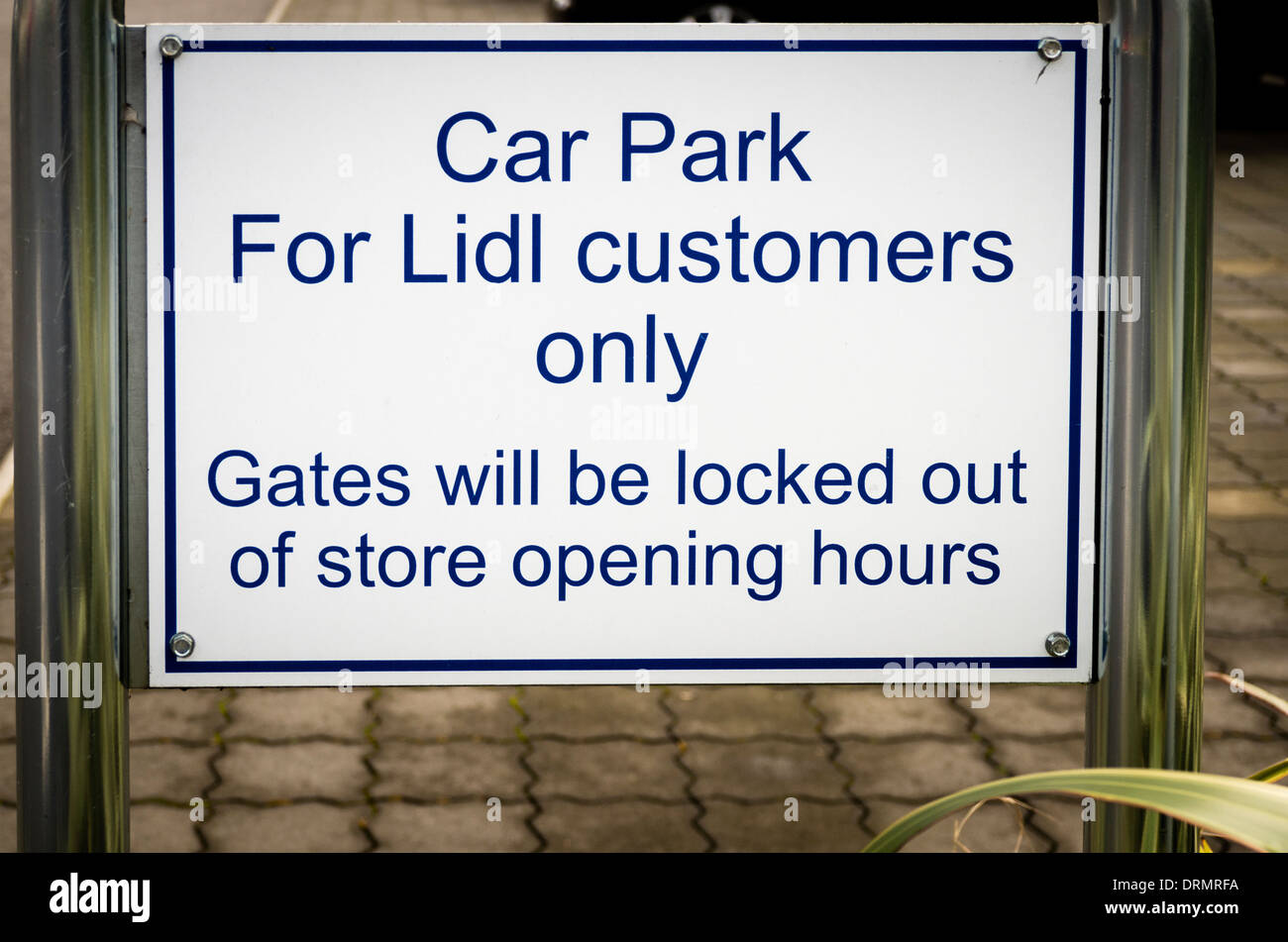 Lidl Company Car Policy