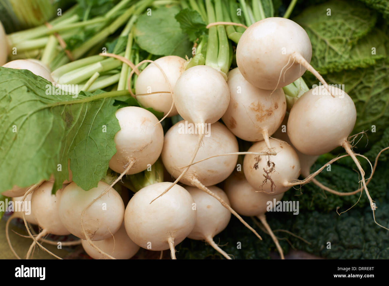Fresh white turnip vegetables for sale on Provence market of Marseille, South France - Stock Image