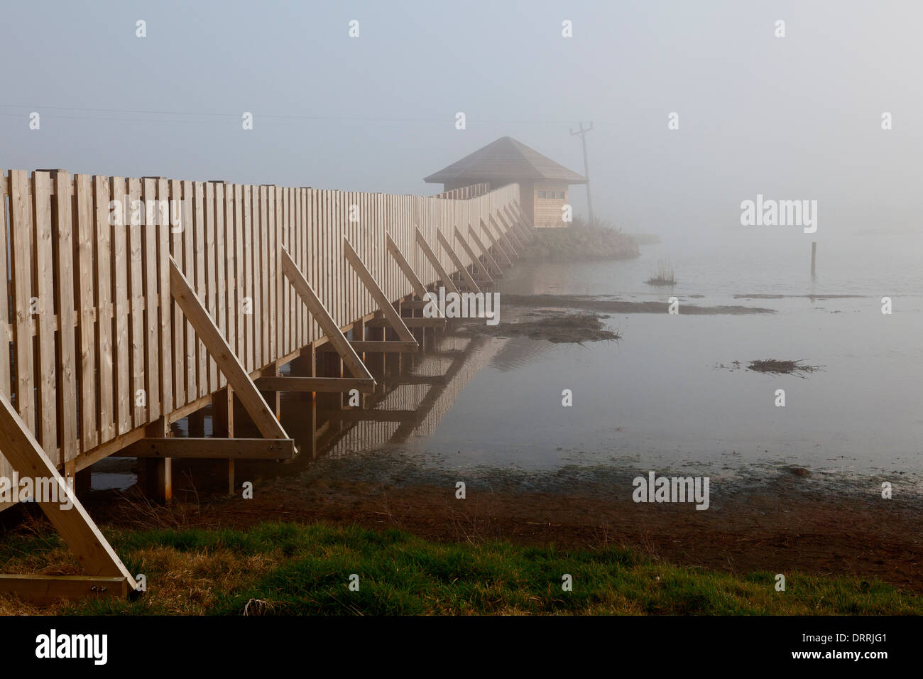 bird-hide-on-black-hole-marsh-in-the-mist-seaton-devon-DRRJG1.jpg