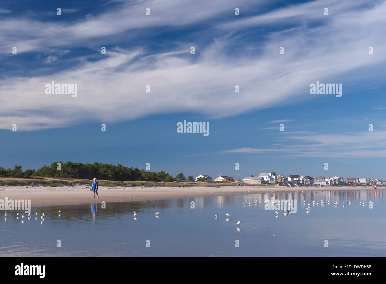senior-woman-walking-on-the-beach-in-moody-maine-usa-DWDH3F.jpg