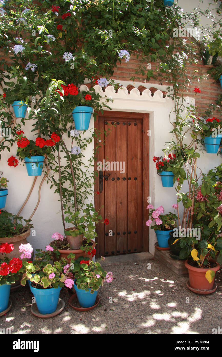 Spain in the summer, costa del sol.  Welcoming wooden door surrounded    with flowers and vin leafs - Stock Image
