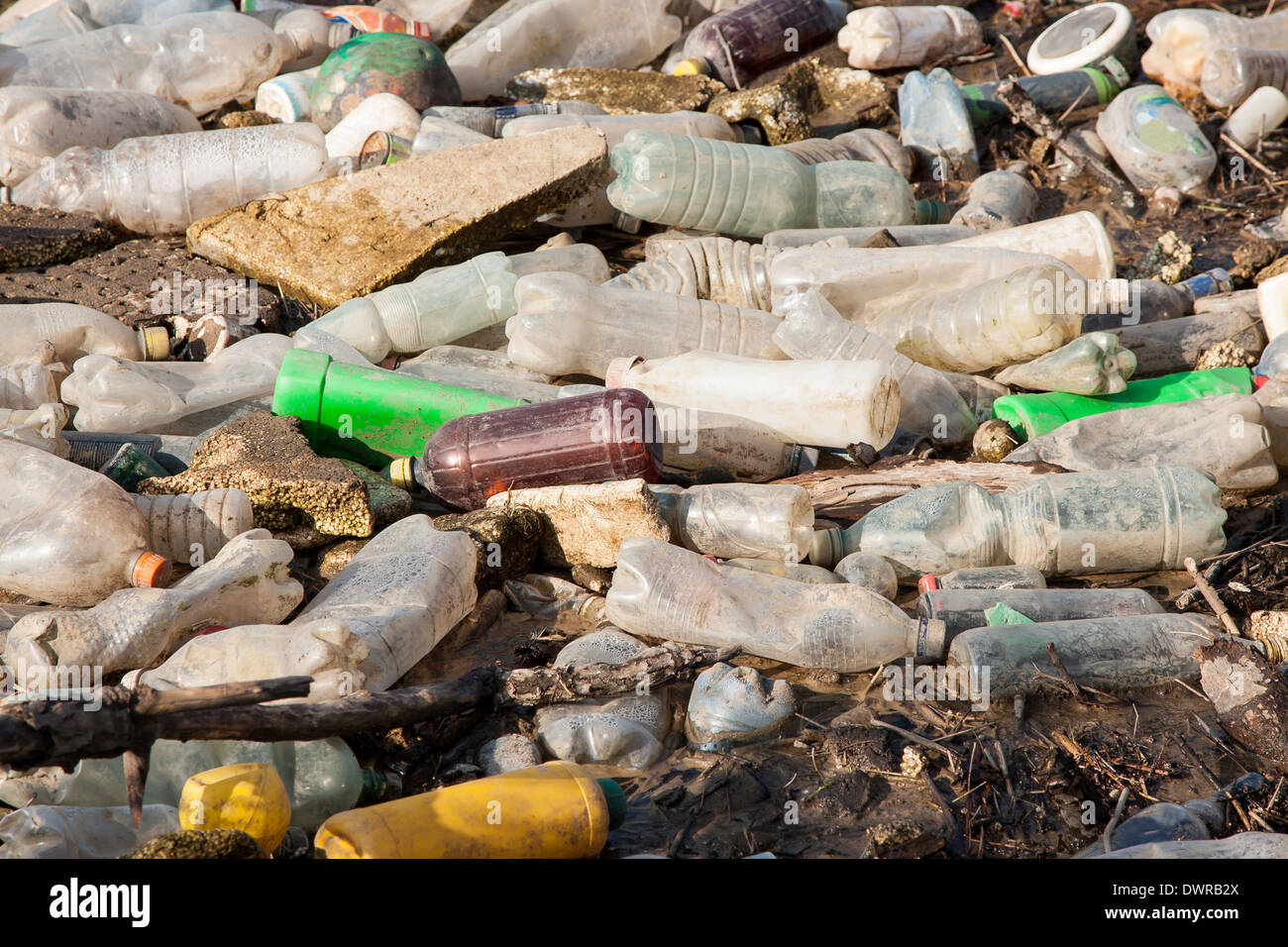 Environmental pollution. Plastic bottles on illegal dump - Stock Image