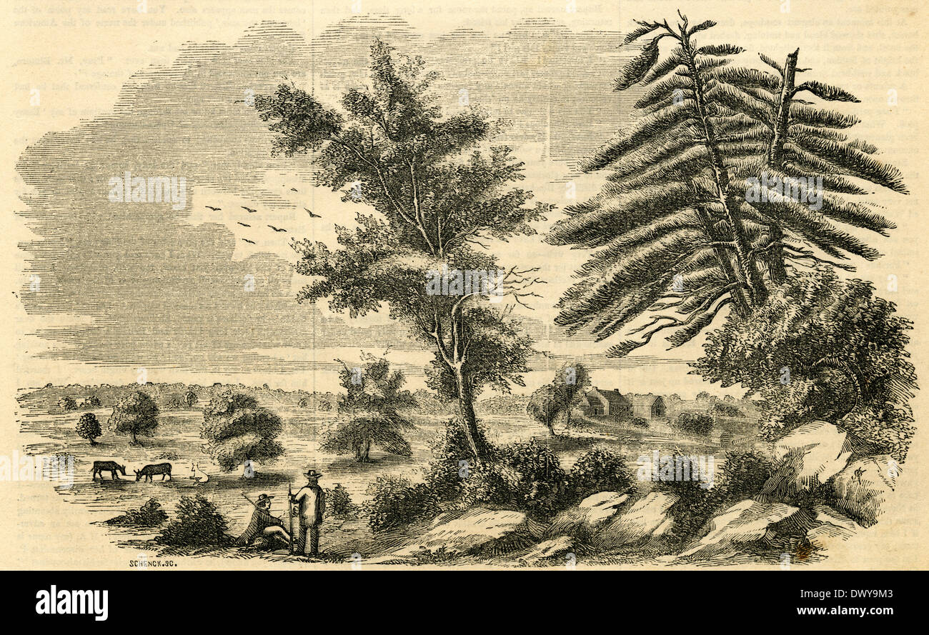 1854 engraving, View of the Monmouth Battleground in Monmouth, New Jersey, USA. - Stock Image