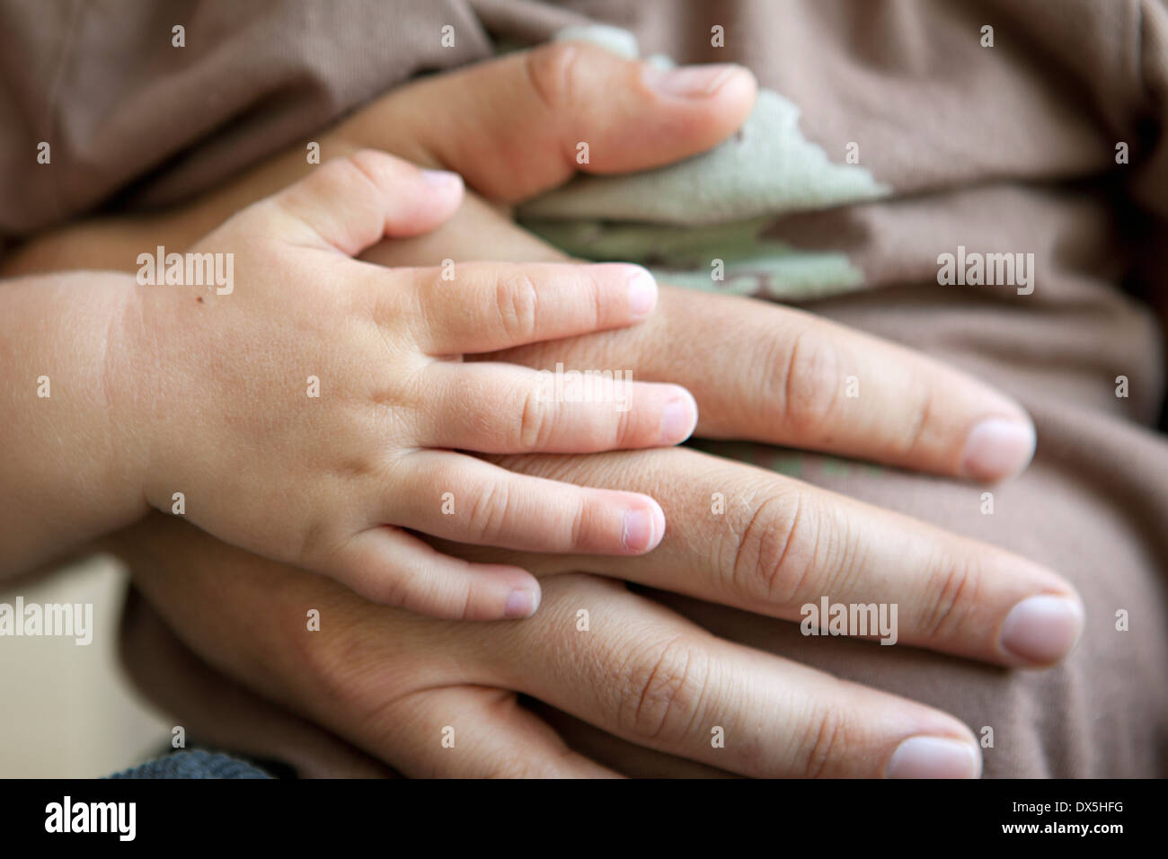 Father and baby touching hands lovingly, close up - Stock Image