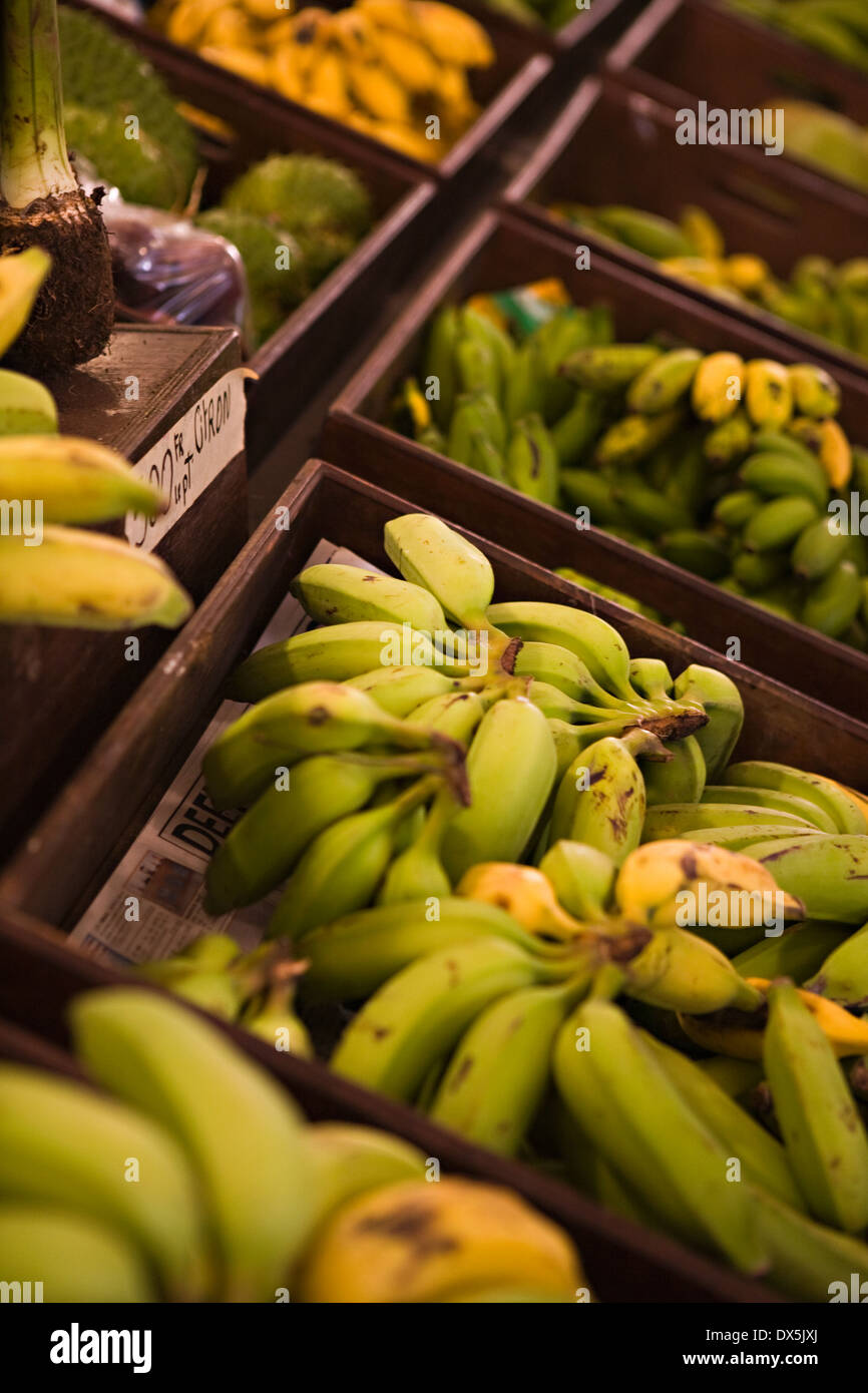 Banana bunches on display at market, high angle view - Stock Image