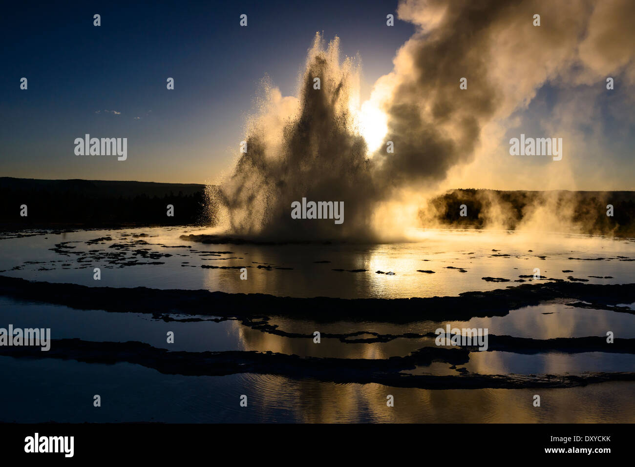 Great Fountain Geyser erupting at sunset. Stock Photo