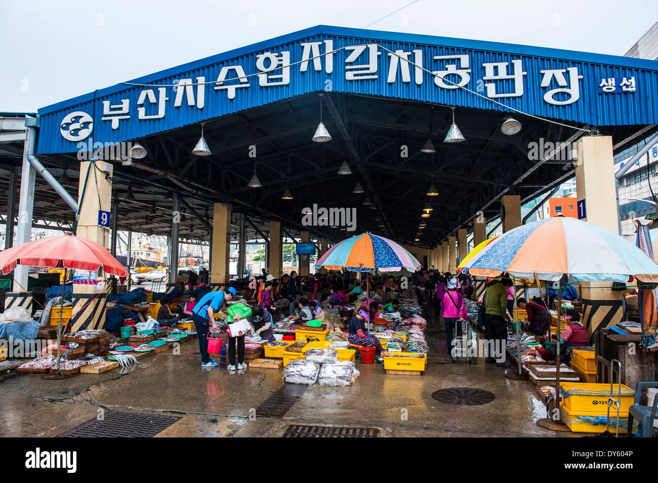 Market, Busan, South Korea, Asia - Stock Image