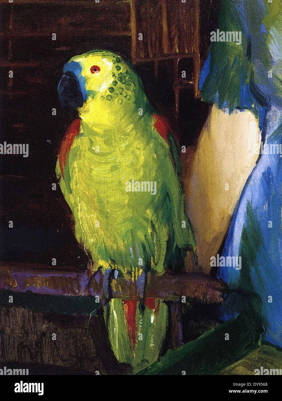 George Wesley Bellows Parrot - Stock Image