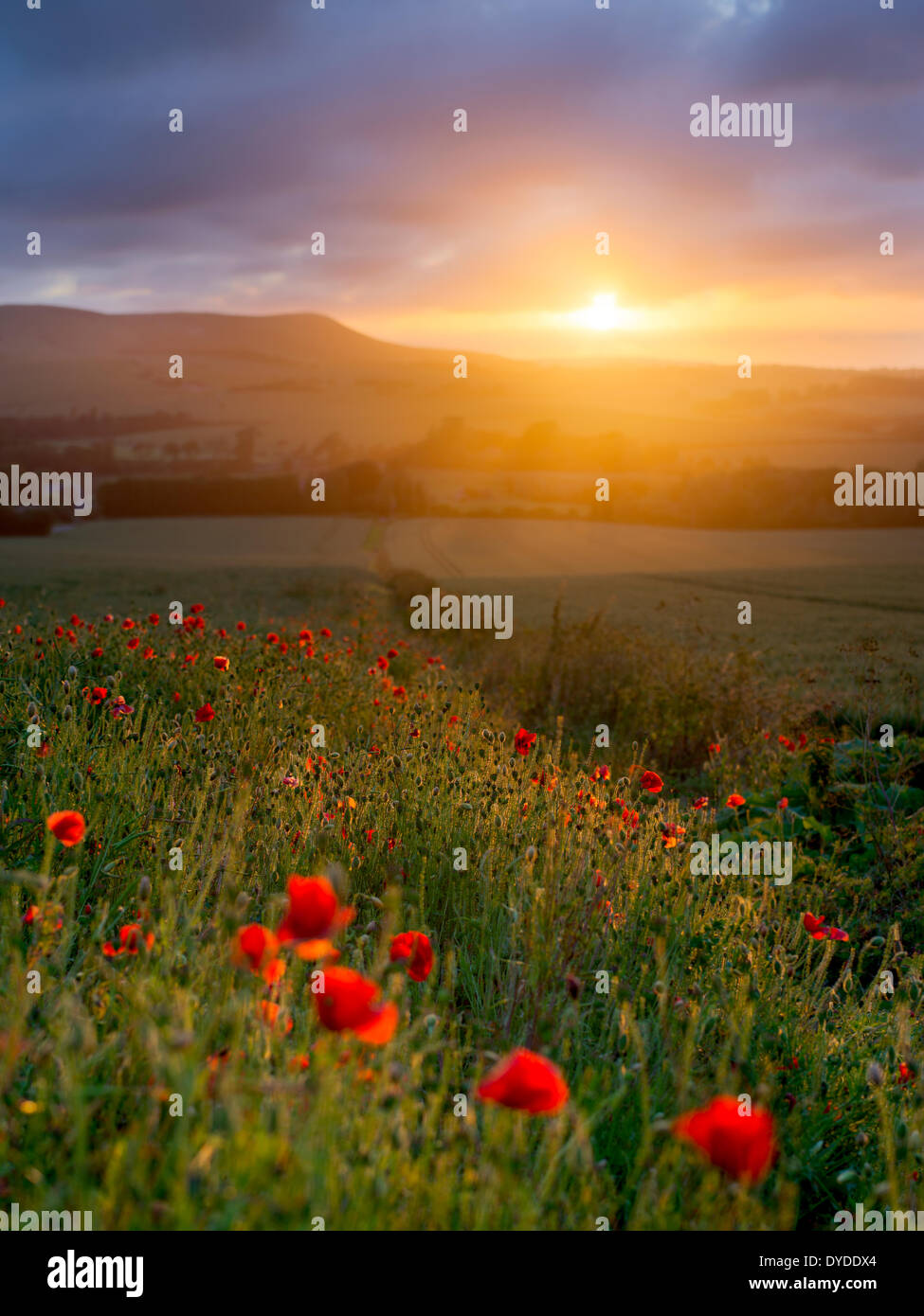 A view from Wilmington across the South Downs National Park. - Stock Image