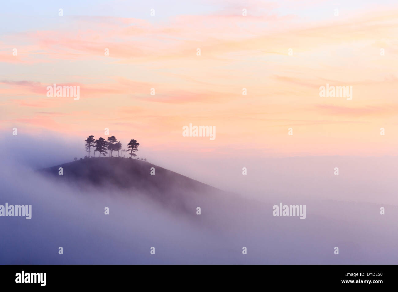 Colmer's Hill in Dorset on a misty autumn morning. - Stock Image