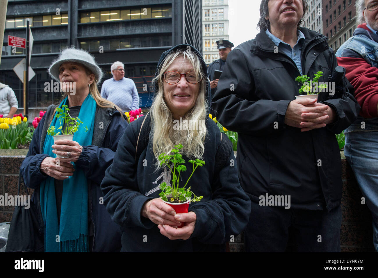 New York, USA. 22nd April 2014. Environmental activists attend a protest in Zuccotti Park on Earth Day. Protesters - Stock Image