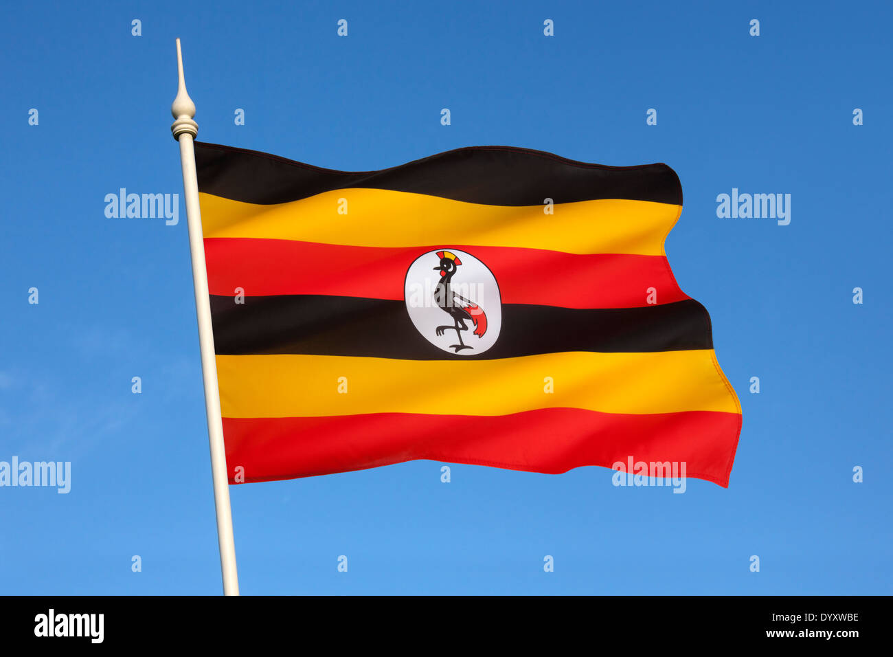 The flag of Uganda - Stock Image