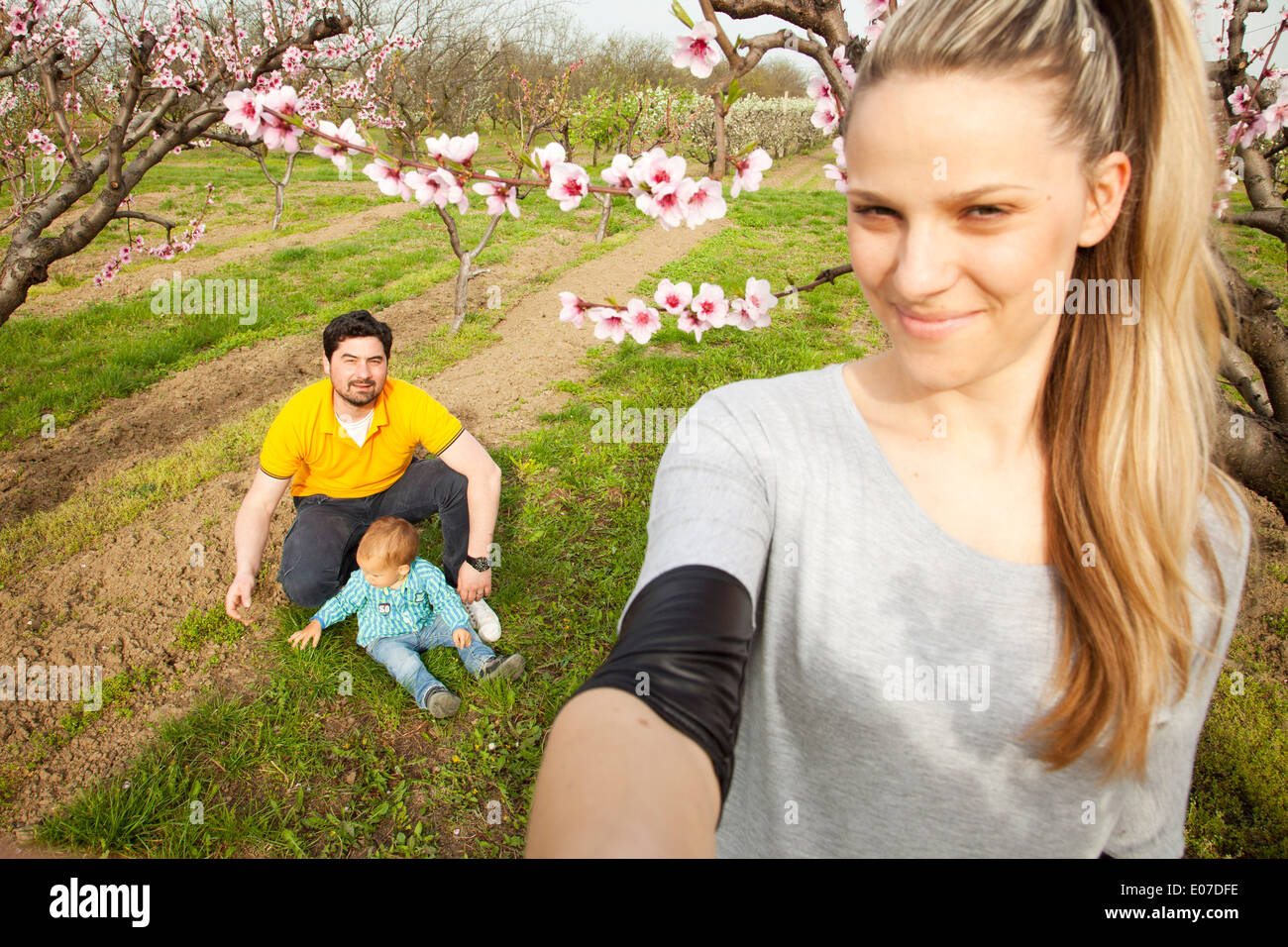 Parents with toddler boy playing by cherry trees, Austria - Stock Image