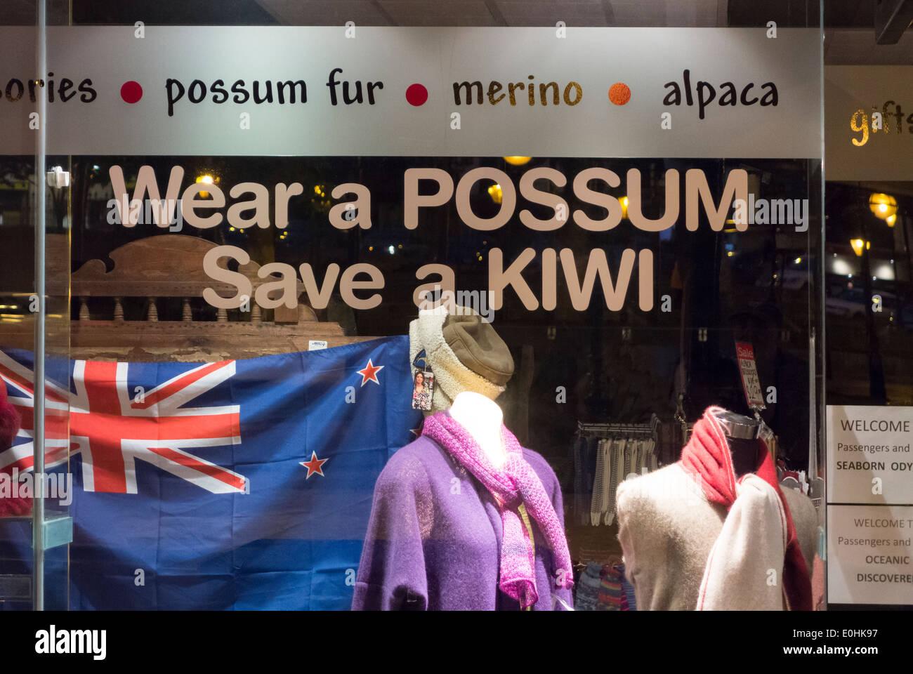 https://c7.alamy.com/comp/E0HK97/wear-a-possum-save-a-kiwi-shop-window-in-dunedin-new-zealand-promoting-E0HK97.jpg