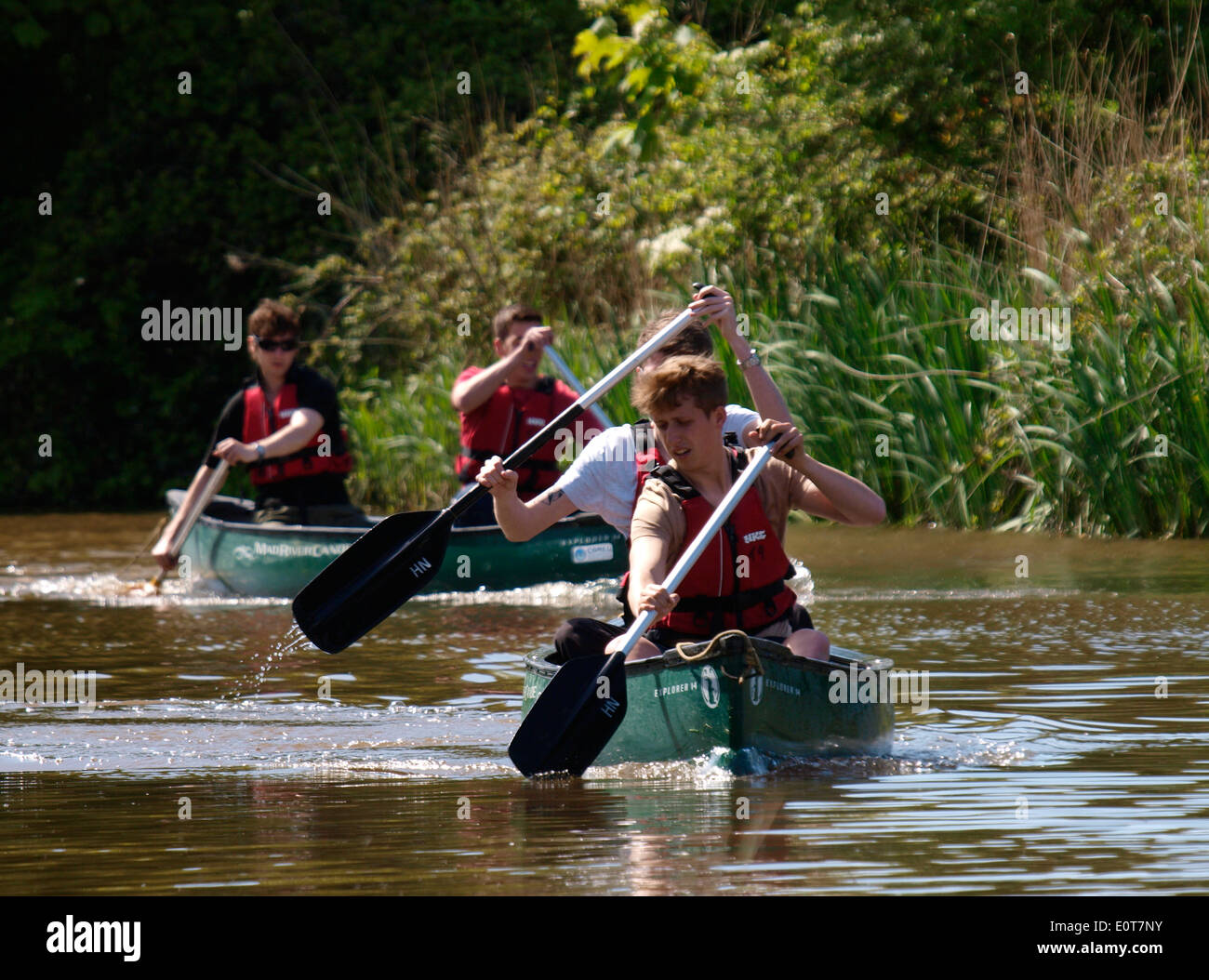 Teenage boys canoeing along the Bude canal, Cornwall, UK - Stock Image