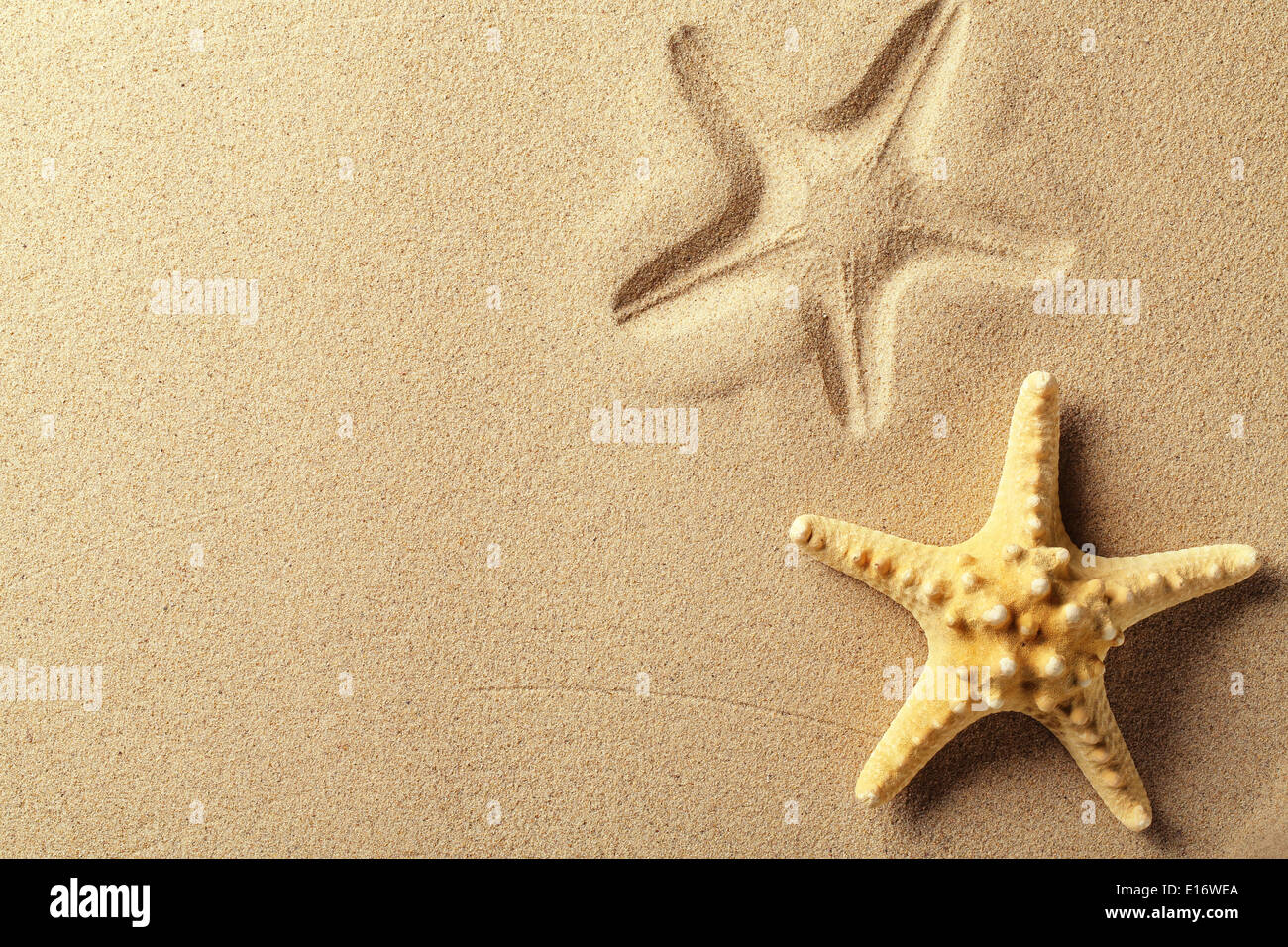 Seashell with imprint on beach sand - Stock Image