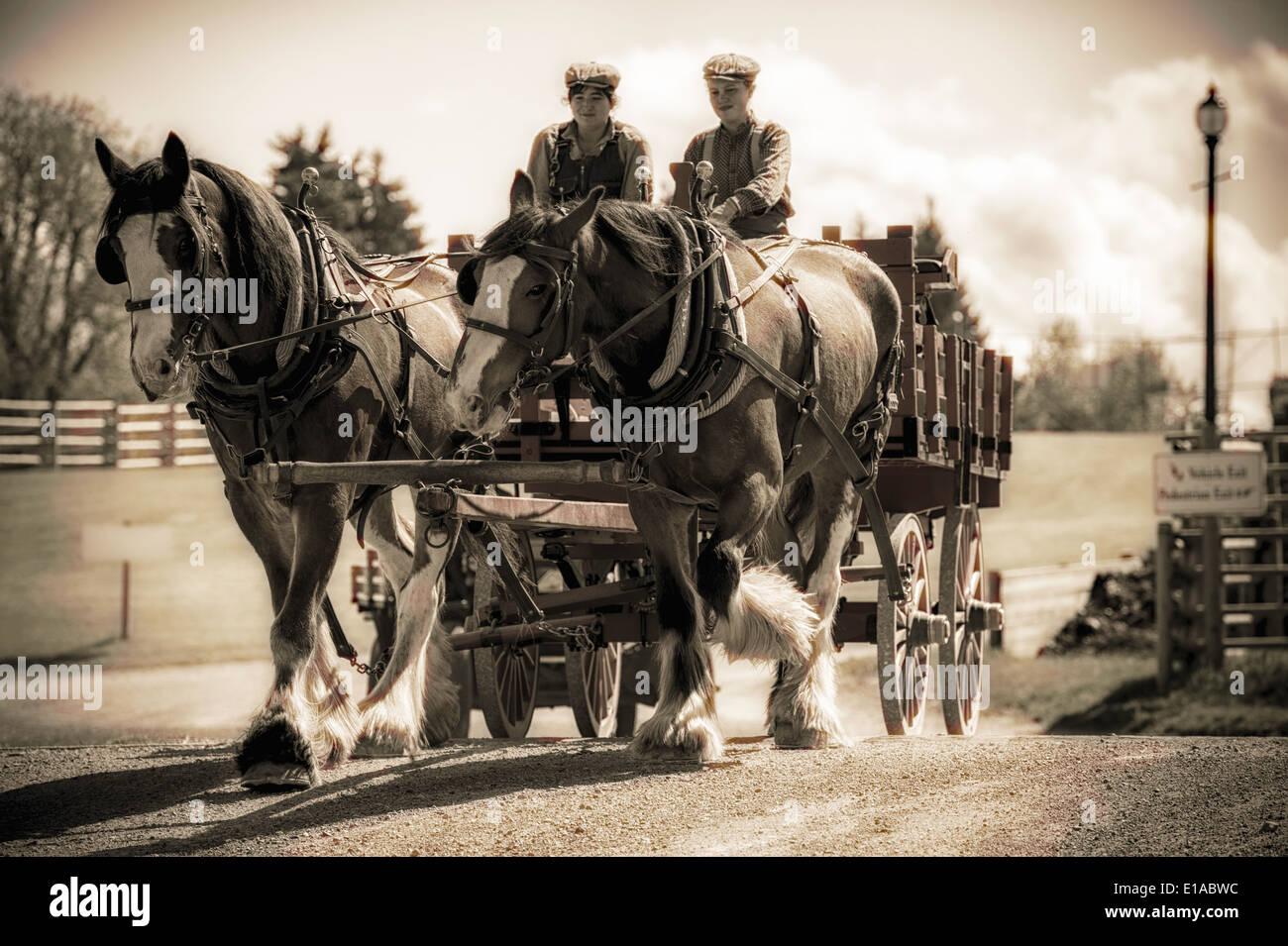 draft-horses-pulling-a-wagon-at-heritage-park-in-calgary-alberta-canada-E1ABWC.jpg