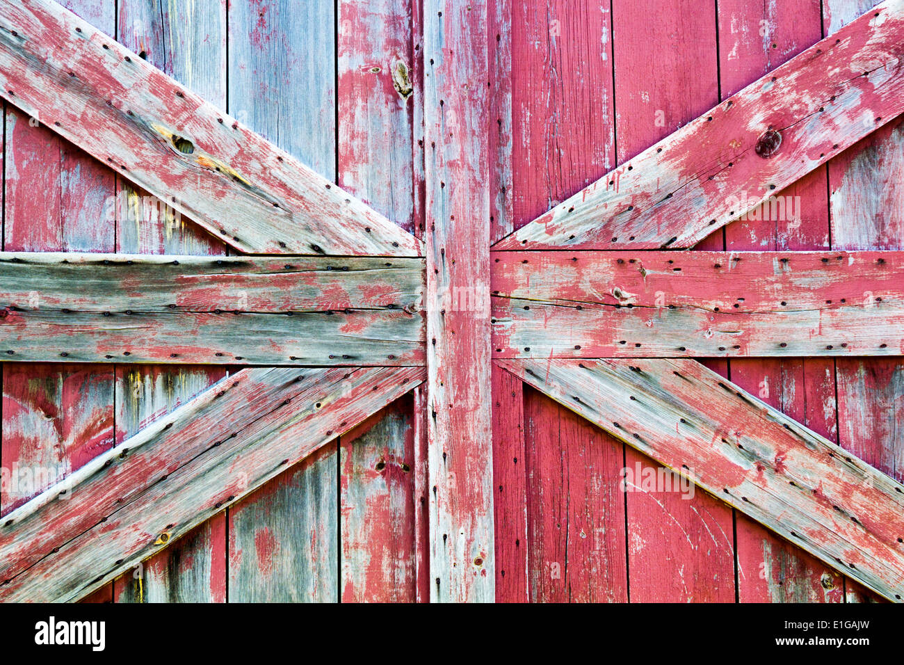 close-up-of-barn-door-with-worn-wood-and-paint-E1GAJW.jpg