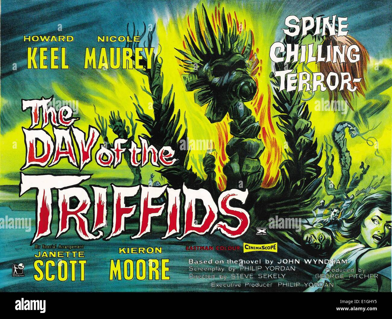 """The Day of the Triffids"" starring Janette Scott and kieron Moore a 1962 British film based on the 1951 science Stock Photo"