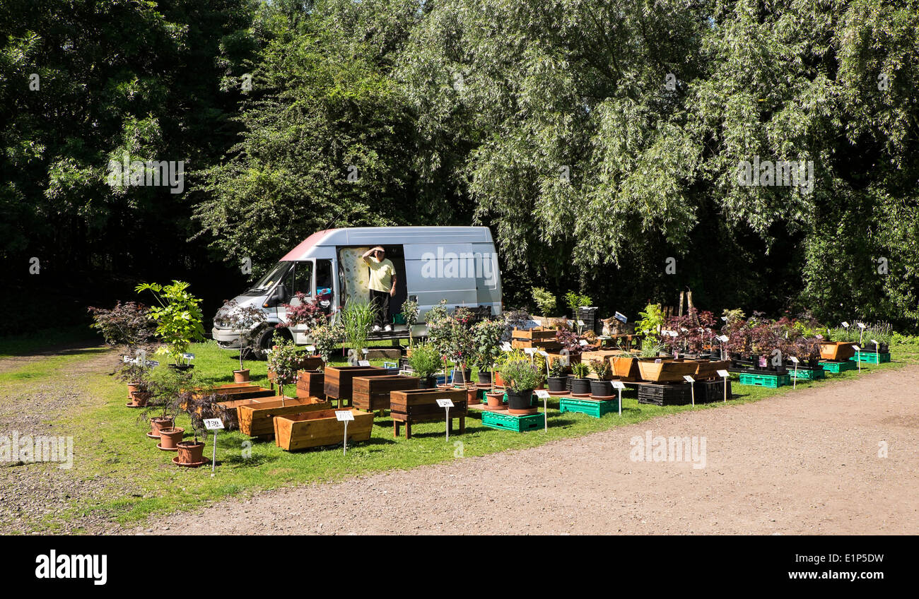 plants-and-planters-for-sale-in-park-E1P5DW.jpg