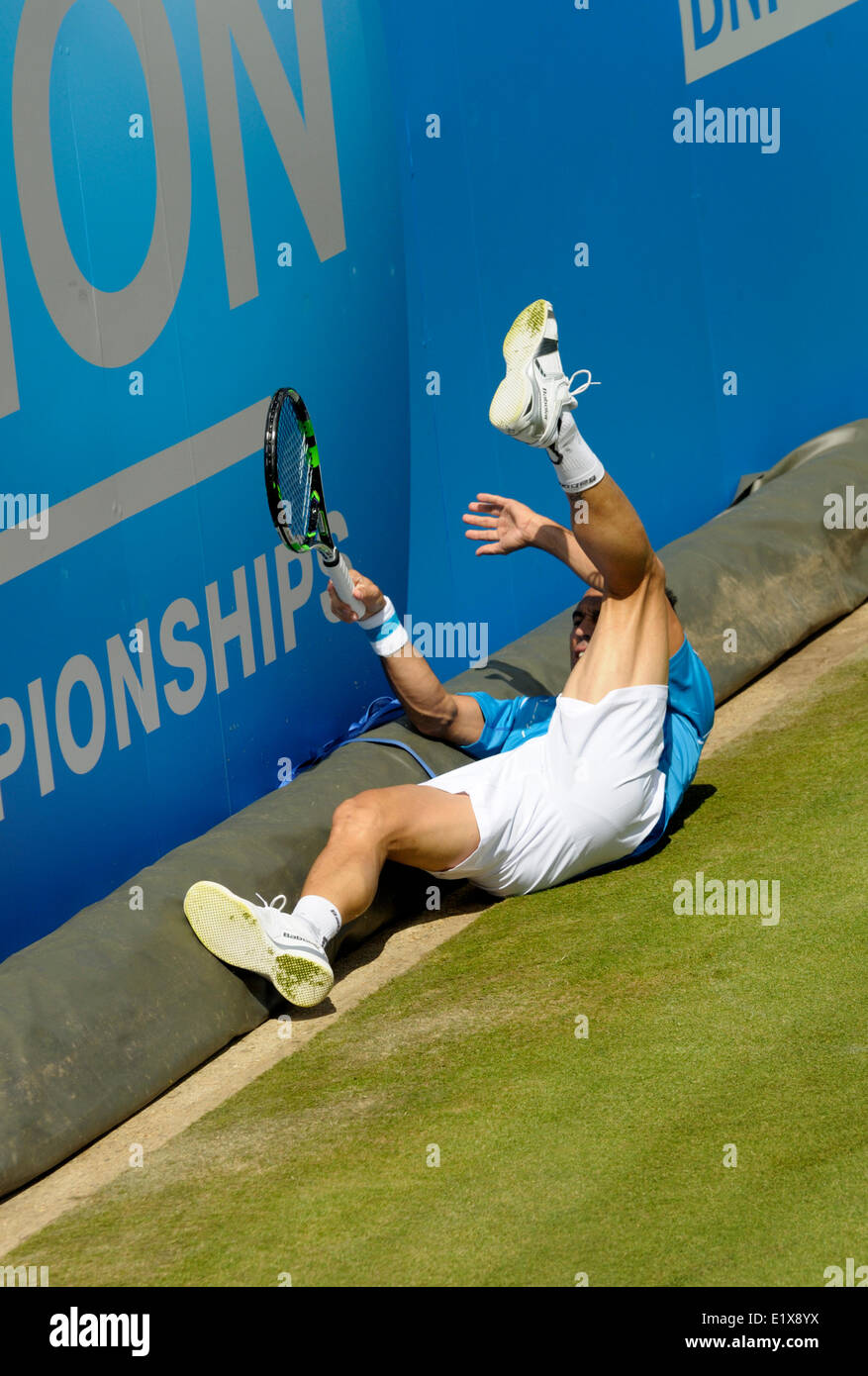 Victor Estrella Burgos (Dominican Republic) slipping on the grass at Queens Club, 2014 Stock Photo
