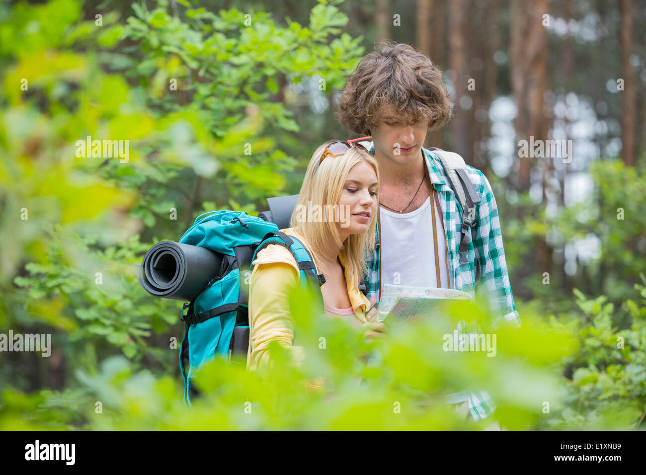 Hiking couple reading map together in forest - Stock Image