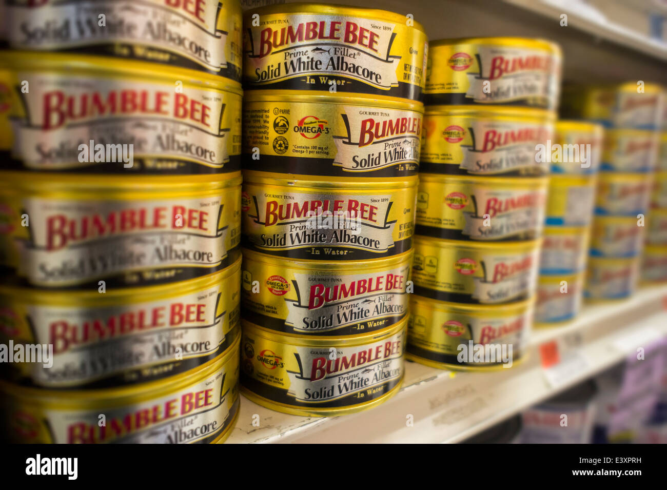 White Albacore | Cans Of Bumble Bee Solid White Albacore Tuna On A Grocery Store