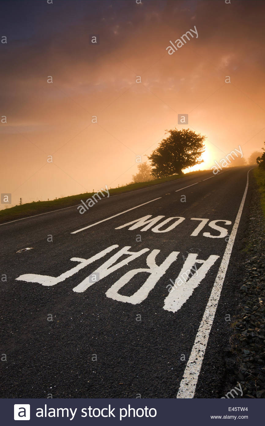 Painted 'SLOW' road sign on a moorland road on a misty sunrise, Brecon Beacons National Park, Powys, Wales, - Stock Image