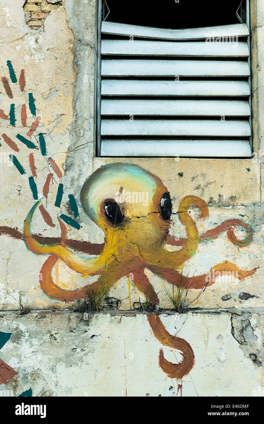 painted-art-of-an-octopus-on-the-front-o