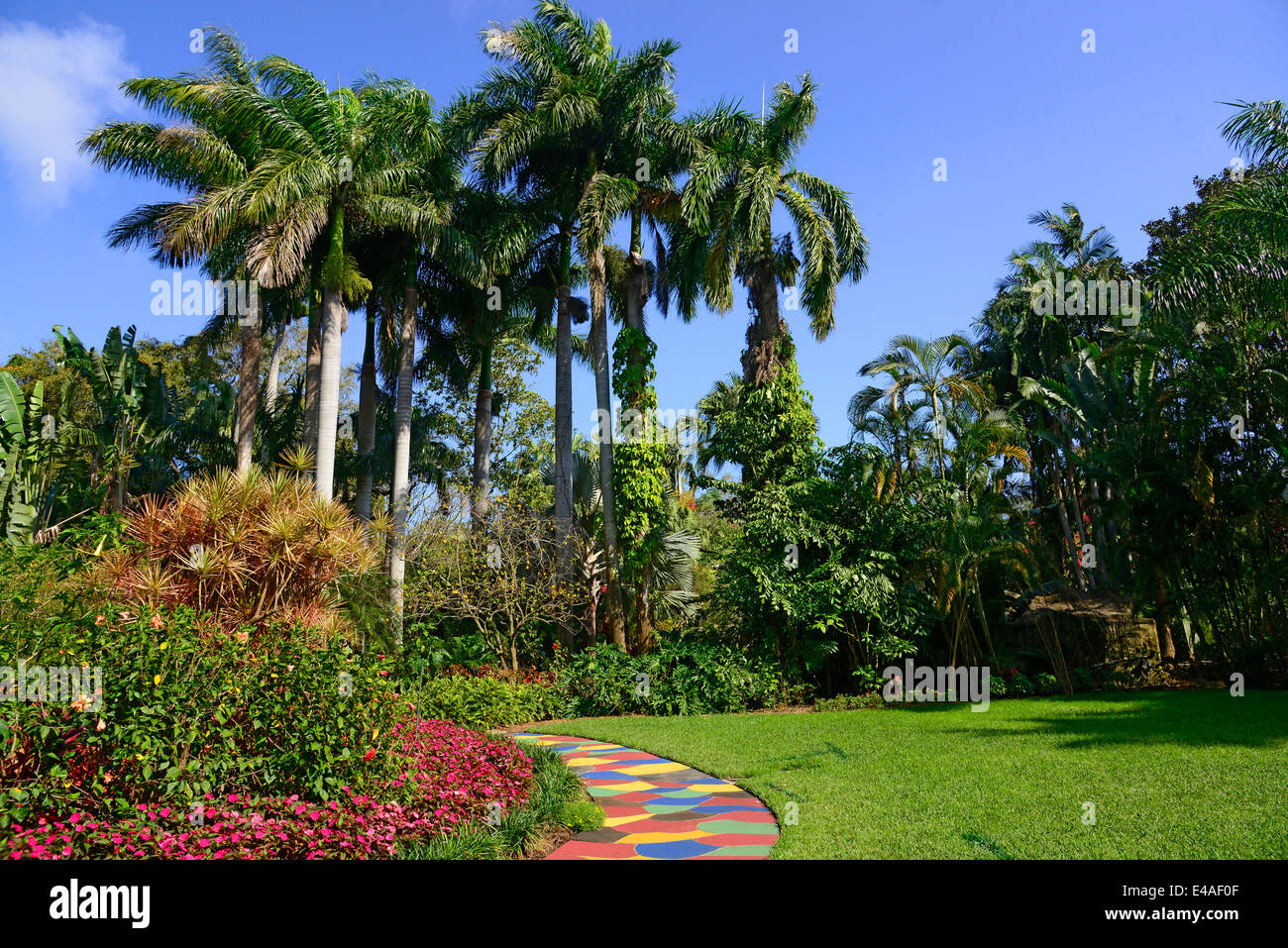 Sunken Gardens Botanical colorful path palm trees St. Petersburg FL ...